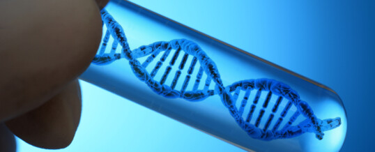 Artificial DNA can control release of active ingredients from drugs
